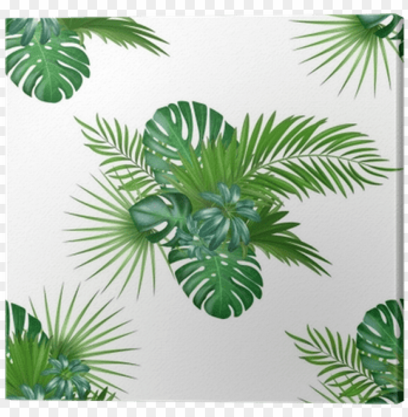 free PNG tropical background with jungle plants - jungle plants PNG image with transparent background PNG images transparent