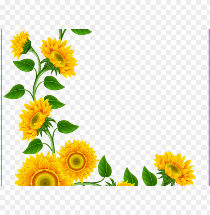 Free Sunflowers Clip Art with No Background - ClipartKey