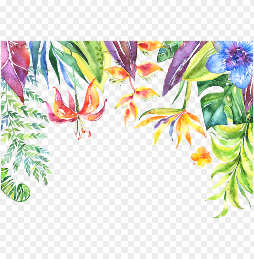free PNG tropical flower border png svg stock - iphone walpapers bible verses PNG image with transparent background PNG images transparent