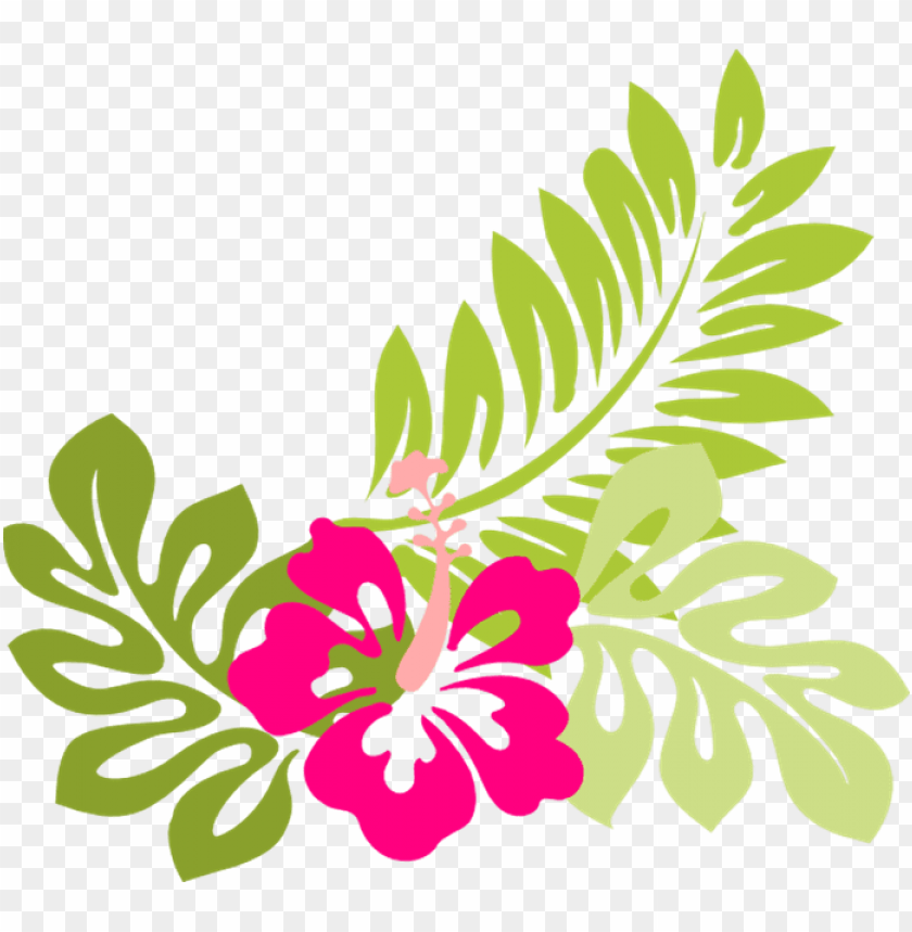 tropical flower clip art flowers clip art hawaiian - tropical flower clipart PNG image with transparent background@toppng.com