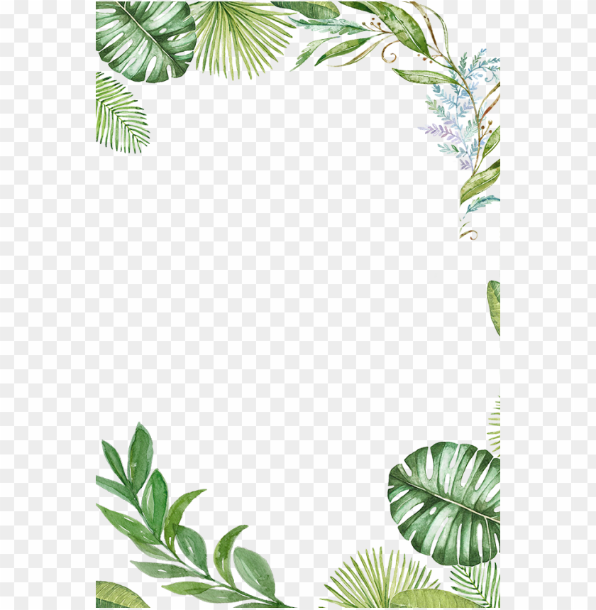 Tropical Leaves Frame Png Image With Transparent Background Toppng