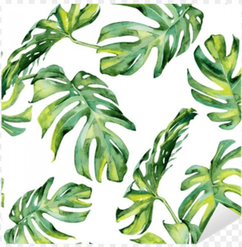 Tropical Leaves Watercolor Free Png Image With Transparent Background Toppng To get more templates about posters,flyers seamless pattern with tropical leaves: tropical leaves watercolor free png