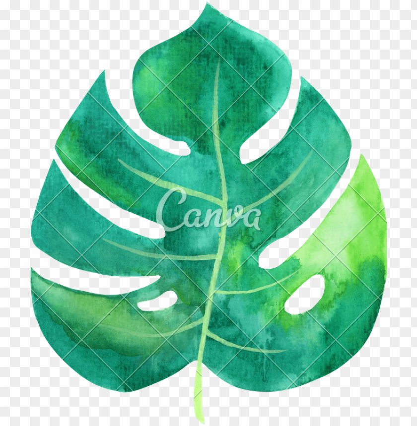 free PNG tropical leaves watercolor png image library download - tropical leaf watercolor PNG image with transparent background PNG images transparent