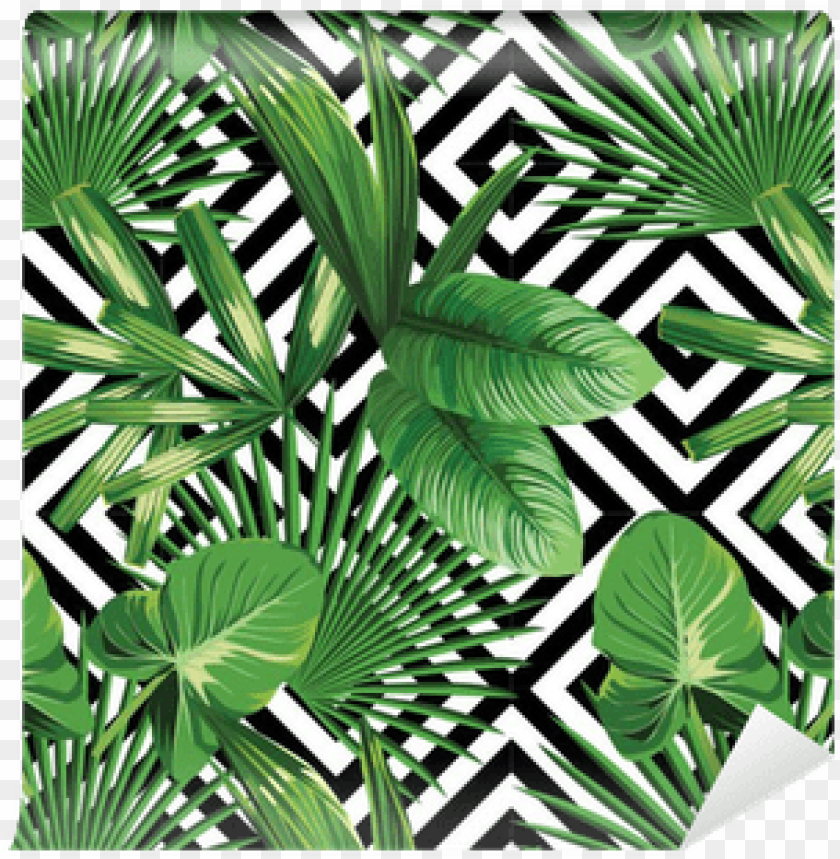 Tropical Palm Leaves Pattern Geometric Background Palm Leaves Png Image With Transparent Background Toppng We upload amazing new content everyday! tropical palm leaves pattern geometric