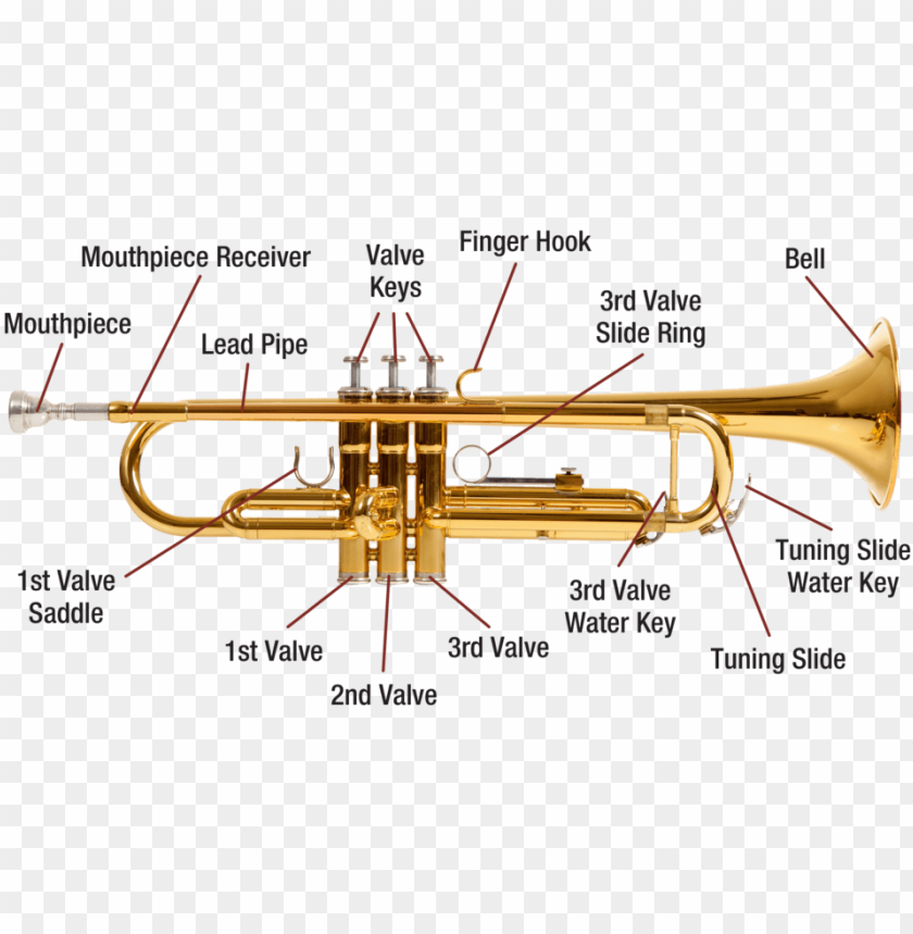 free PNG trumpet diagram image - labelled diagram of a trumpet PNG image with transparent background PNG images transparent