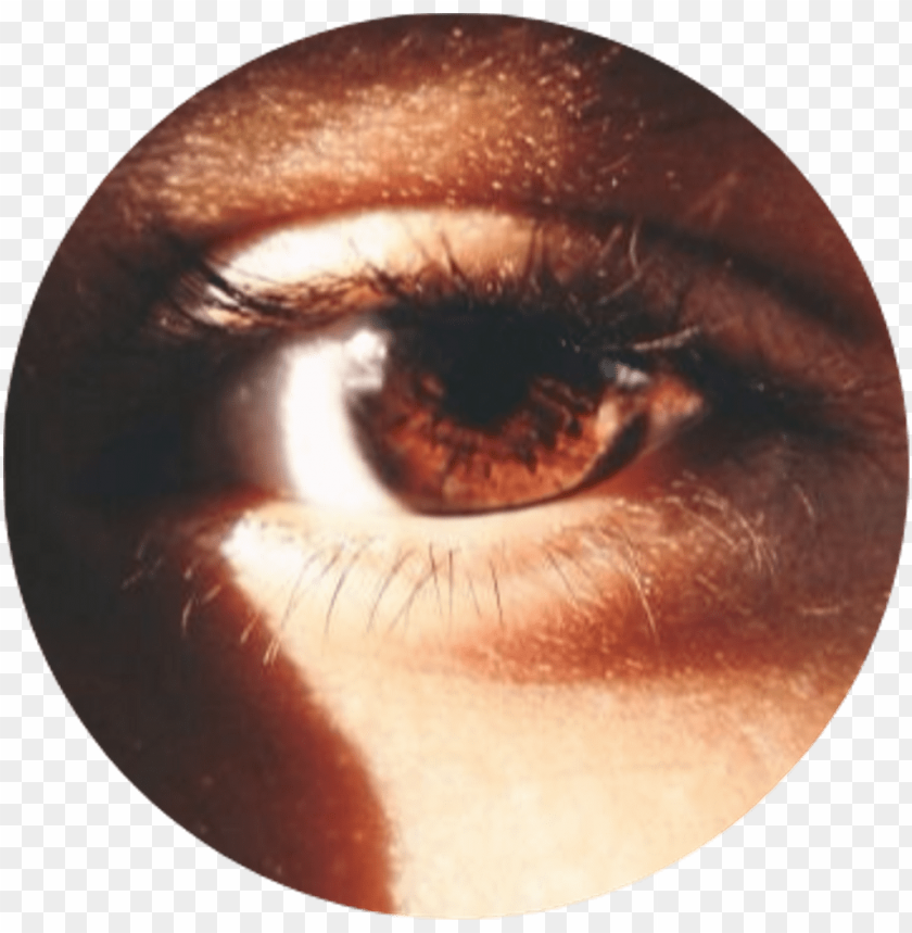 free PNG tumblr aesthetic brown eye browneye - brown eyes tumblr aesthetic PNG image with transparent background PNG images transparent