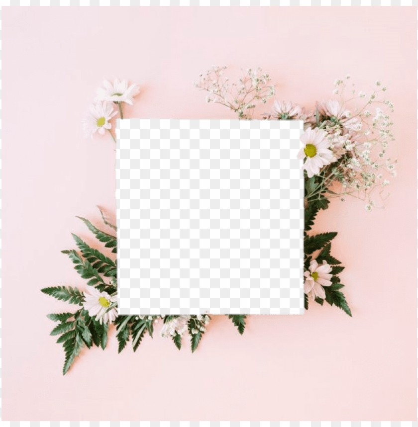 free PNG tumblr aesthetic flowers flower polaroid png aesthetic - convite casamento campo PNG image with transparent background PNG images transparent