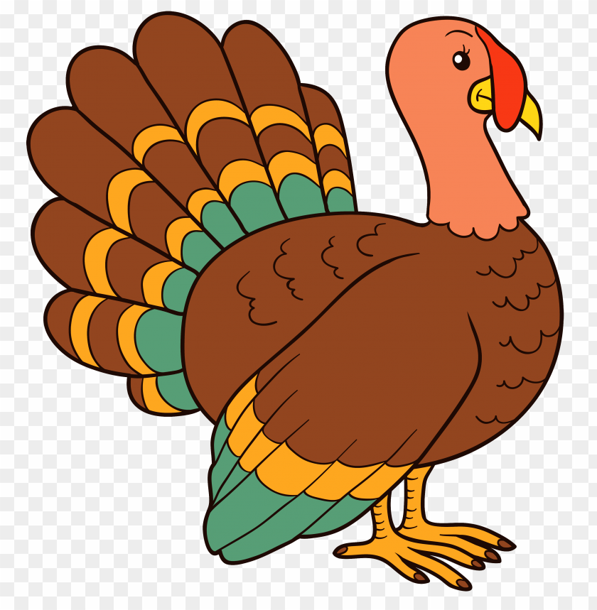 free PNG Download turkey  image clipart png photo   PNG images transparent