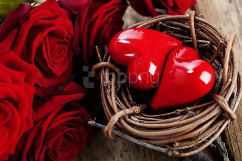 free PNG valentine's daywith nest hearts and roses background best stock photos PNG images transparent