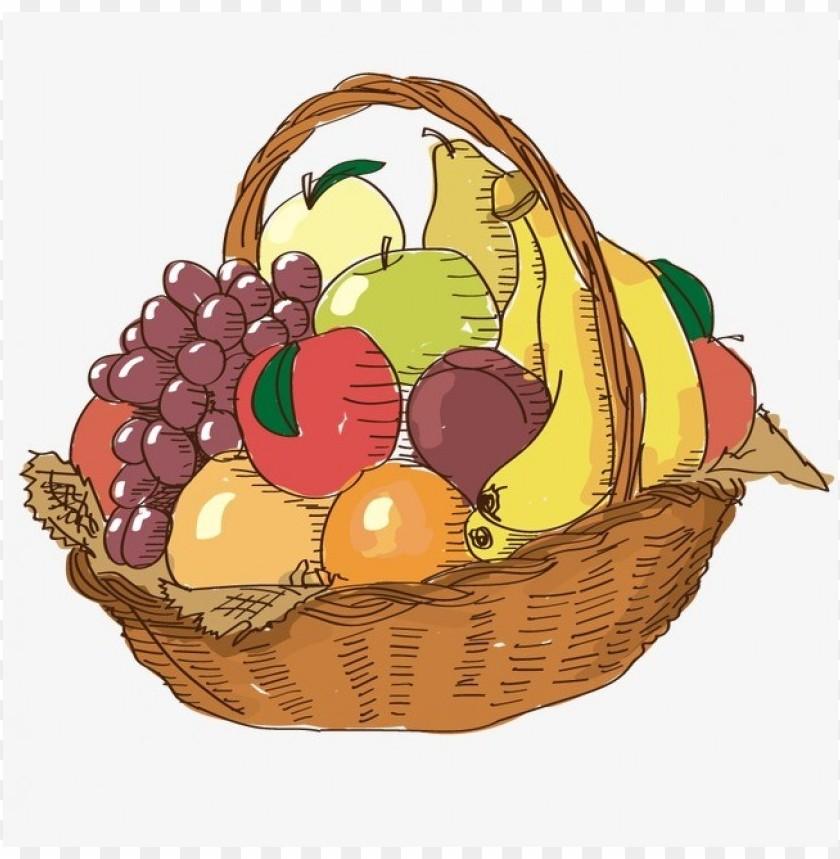 free PNG Download vector fruit basket, h clipart png photo   PNG images transparent