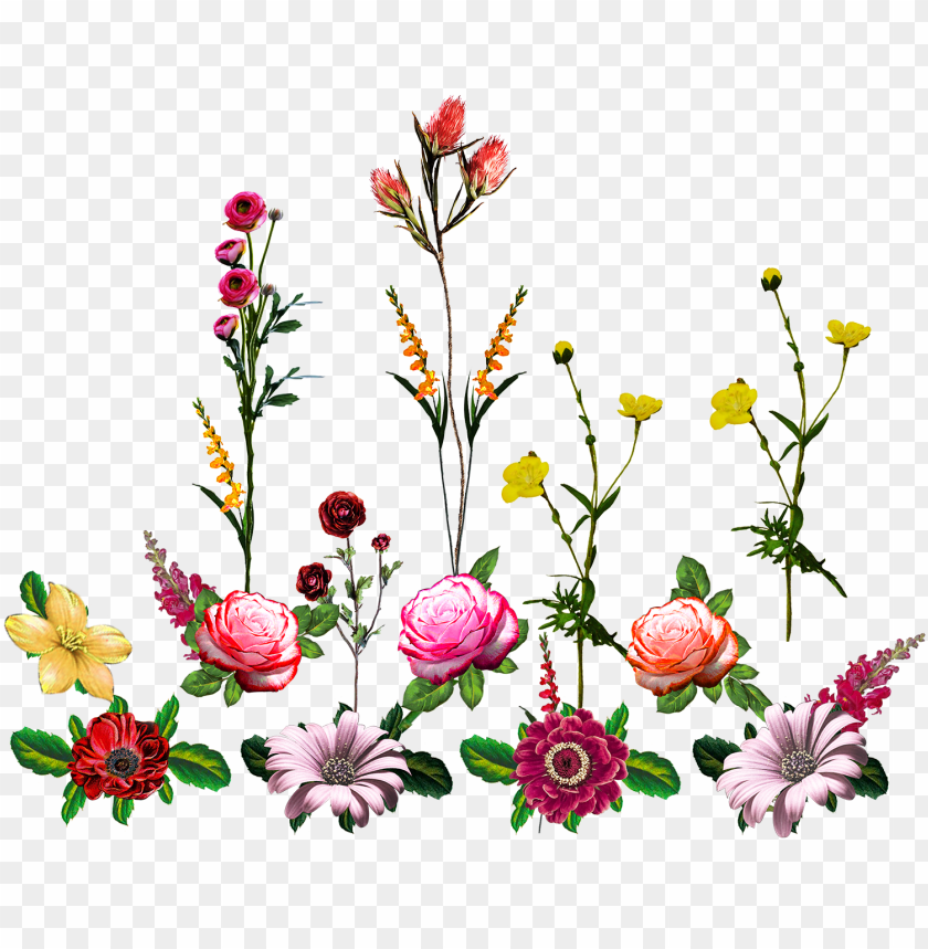 free PNG vector,flower,vector art,flower vector,vector flower - artificial flower PNG image with transparent background PNG images transparent