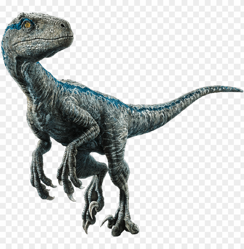 free PNG velociraptor - jurassic world el reino caído dinosaurios PNG image with transparent background PNG images transparent