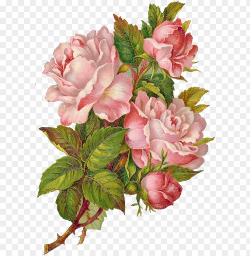 free PNG victorian flowers, vintage flowers, victorian crafts, - violette stickers pink rose wreaths PNG image with transparent background PNG images transparent