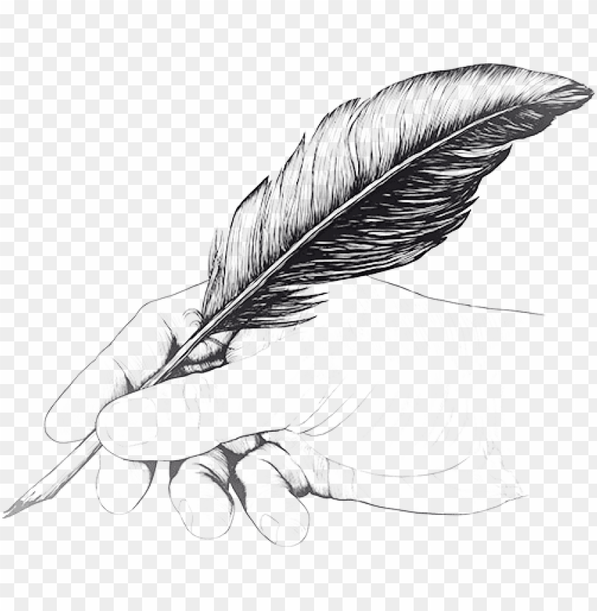 free PNG vintage drawing of hand with feather pen - drawing of hand holding a pe PNG image with transparent background PNG images transparent