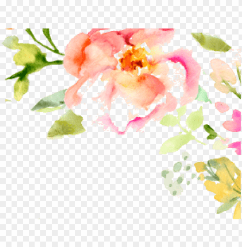 free PNG watercolor flowers border free PNG image with transparent background PNG images transparent