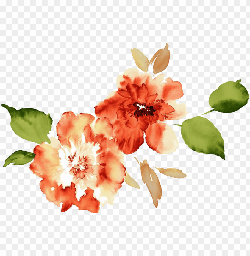 watercolor flowers peach peony png image with transparent background toppng watercolor flowers peach peony png