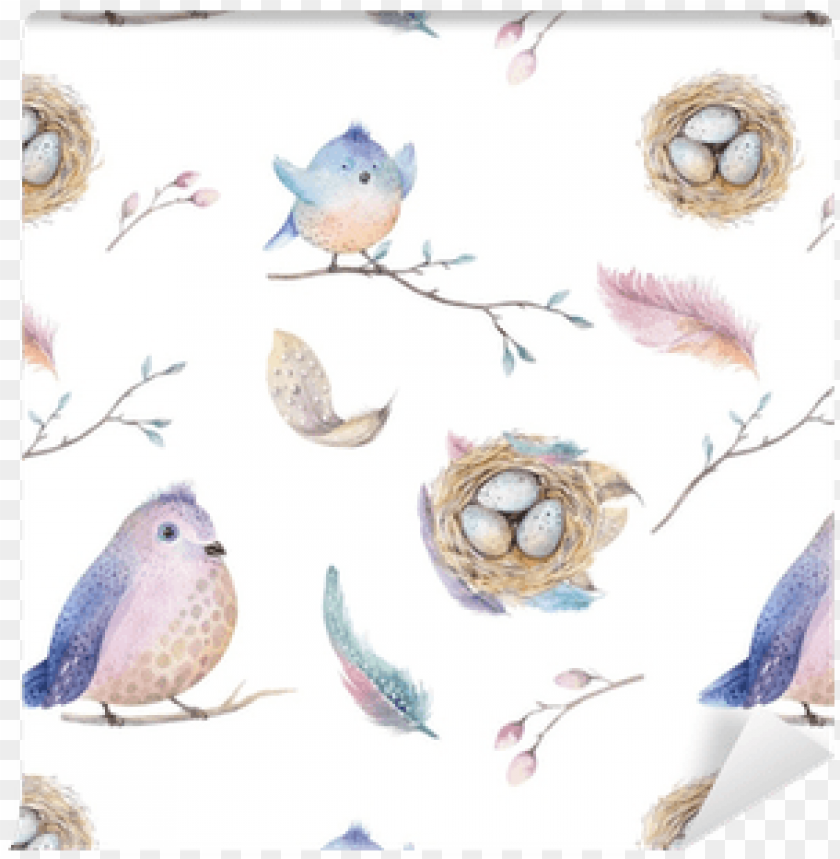 free PNG watercolor illustrations spring PNG image with transparent background PNG images transparent