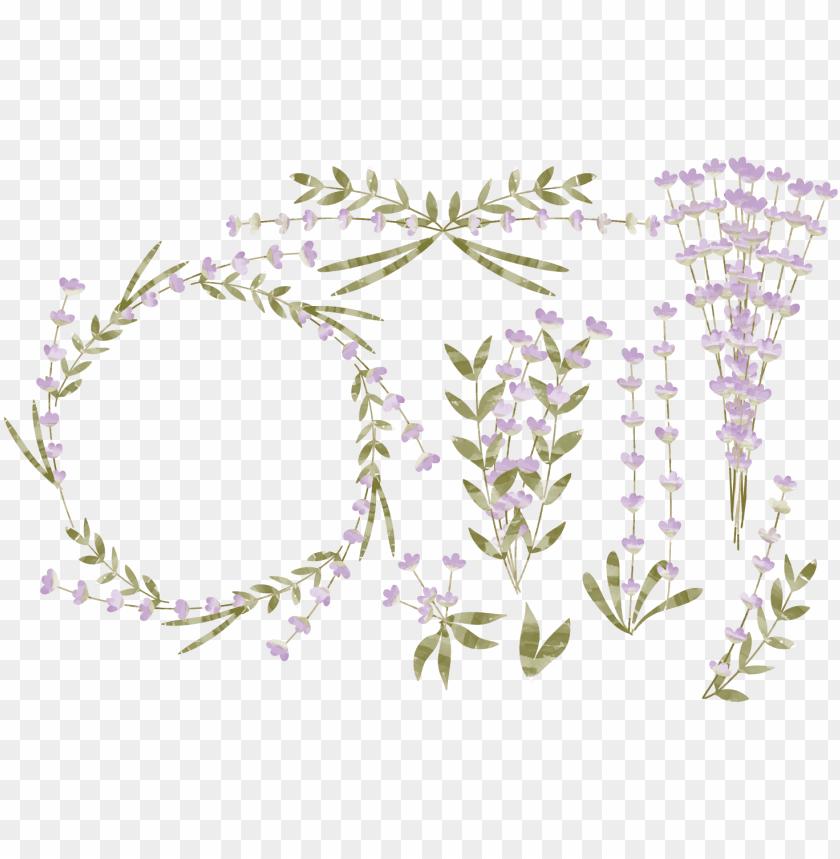 free PNG watercolor lavender png - png flower leaf lavender PNG image with transparent background PNG images transparent