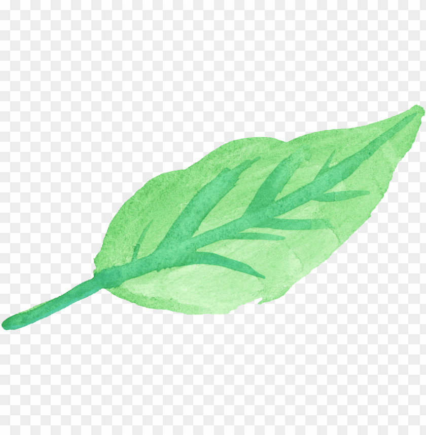 free PNG watercolor leaf 4 - watercolor green leaf PNG image with transparent background PNG images transparent