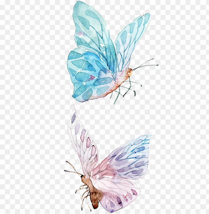 free PNG watercolor painting drawing clip art - watercolor butterfly illustration PNG image with transparent background PNG images transparent