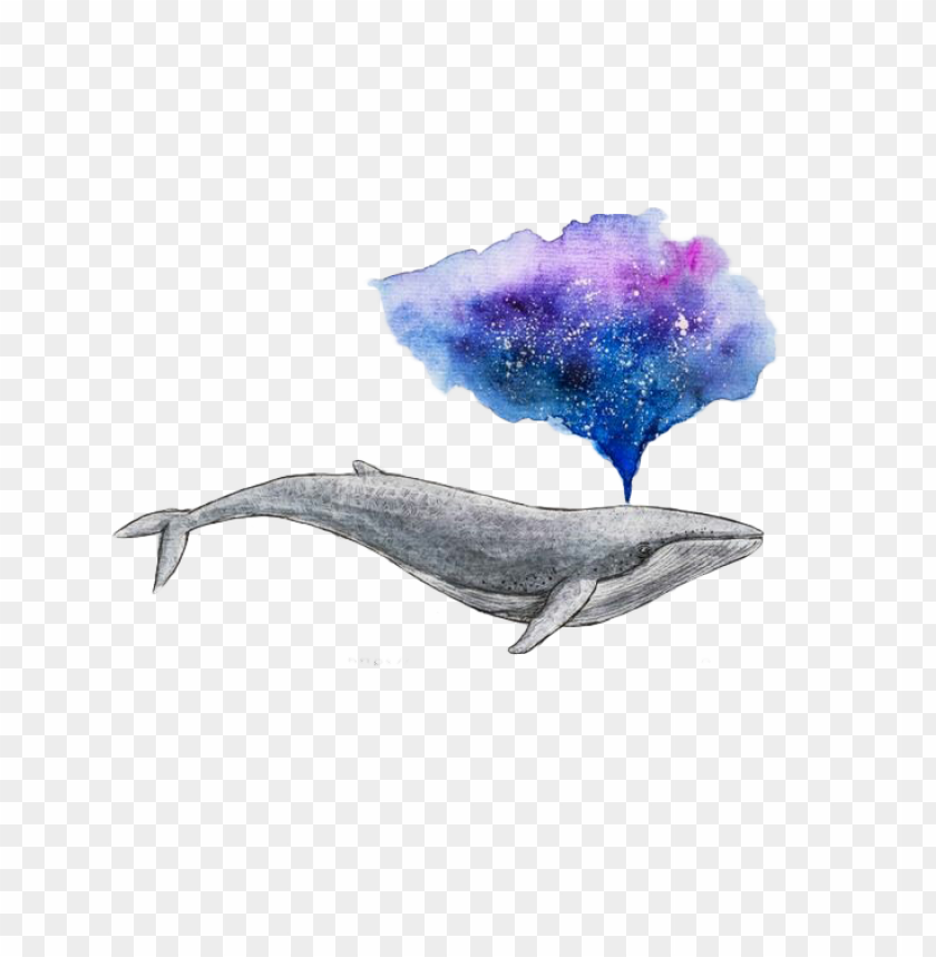 free PNG watercolor painting drawing whale art - watercolour whale PNG image with transparent background PNG images transparent