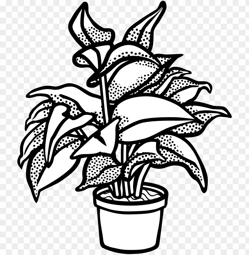 free PNG watercolor potted plants clipart, potted plants, cactus, - clip art black and white plant PNG image with transparent background PNG images transparent