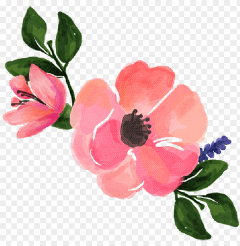 free PNG watercolour flower png - watercolour pink flower PNG image with transparent background PNG images transparent