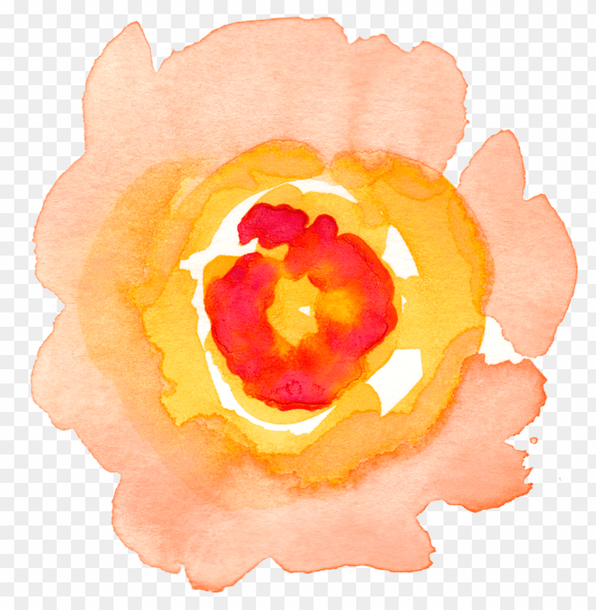 free PNG watercolour flowers watercolor painting clip art - watercolor flowers clipart transparent PNG image with transparent background PNG images transparent