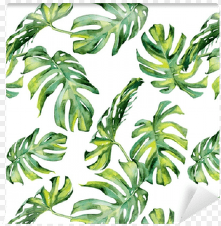 free PNG watercolour tropical leaf vector free PNG image with transparent background PNG images transparent