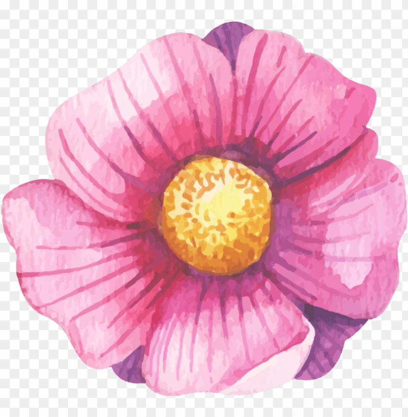 free PNG watercolour watercolor flower floral - watercolor painti PNG image with transparent background PNG images transparent