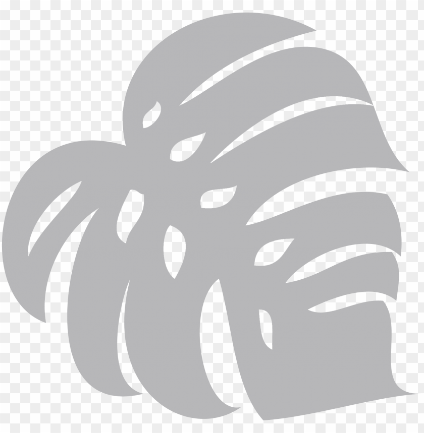 free PNG web - cartoon monstera leaf PNG image with transparent background PNG images transparent