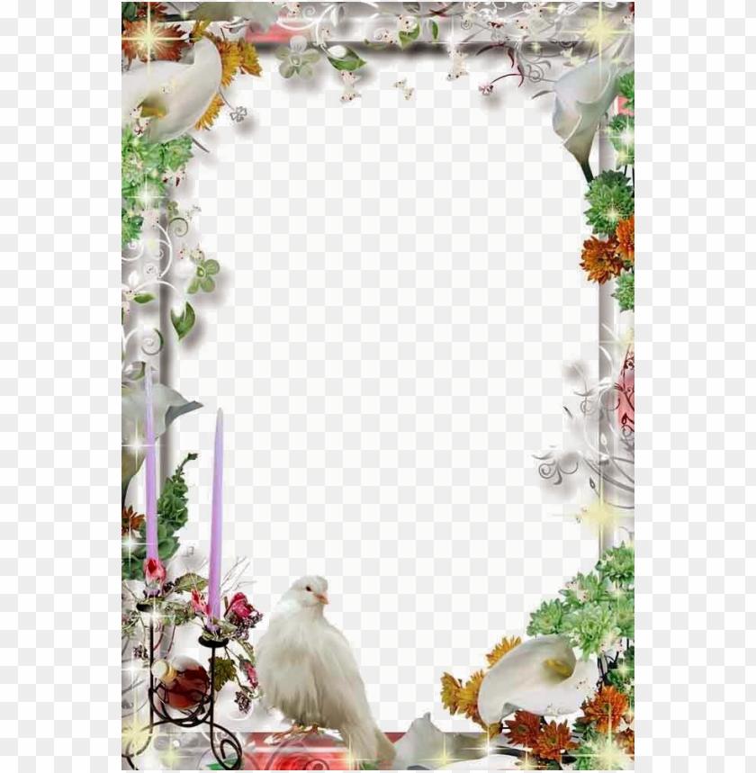 free PNG wedding frame transparent file png png white wedding - png wedding photo frame PNG image with transparent background PNG images transparent