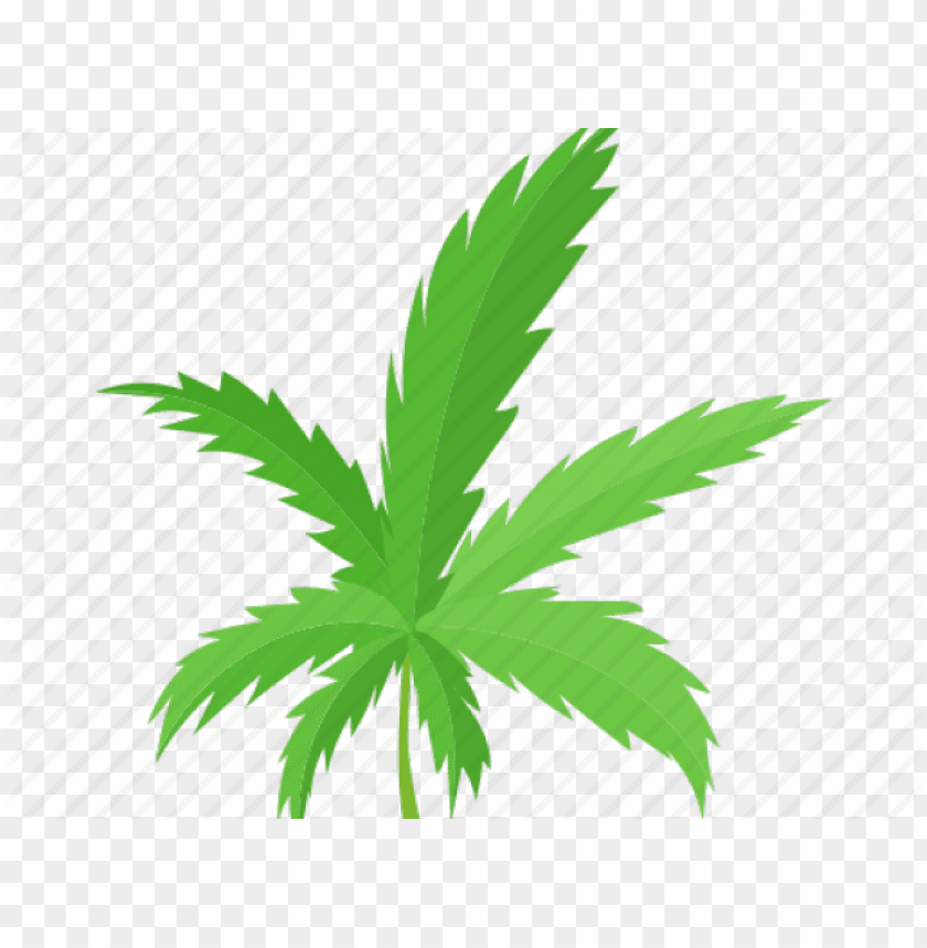 Weed Leaf Cartoon Png Image With Transparent Background Toppng