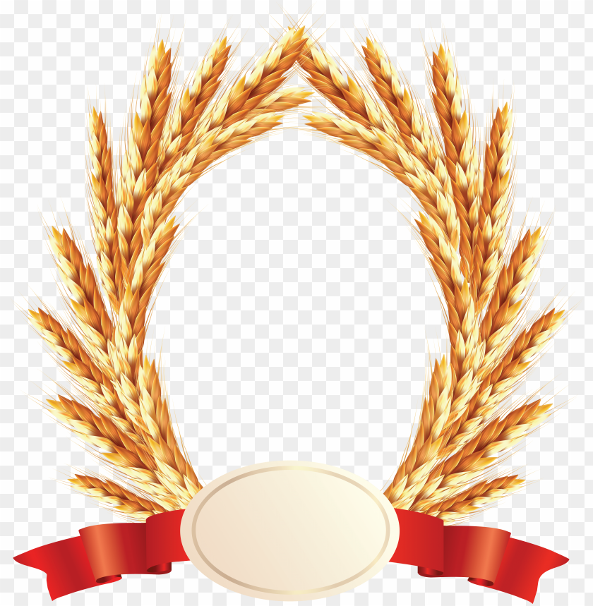 free PNG Download Wheat png images background PNG images transparent