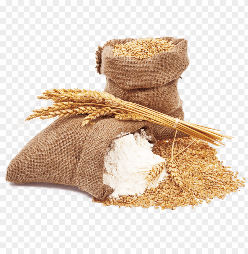 free PNG wheat and wheat flour - wheat flour PNG image with transparent background PNG images transparent