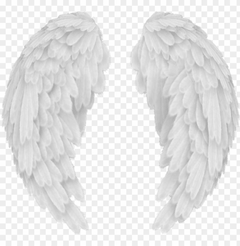 free PNG white angel wings png transparent image - angel wings no background PNG image with transparent background PNG images transparent