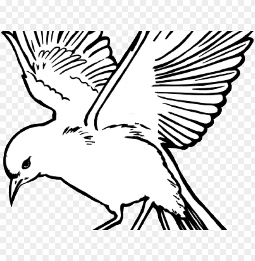 free PNG white dove clipart fire png - flying bird line drawi PNG image with transparent background PNG images transparent