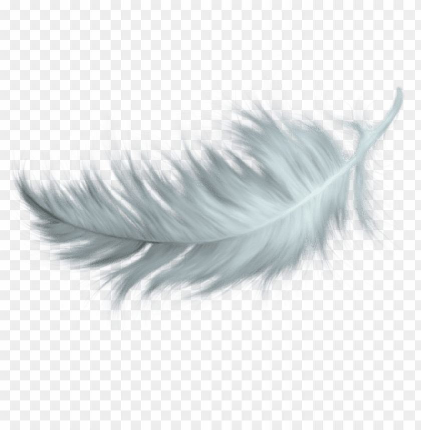 free PNG white feather tattoos, feather pen tattoo, feather - white feathers falling PNG image with transparent background PNG images transparent