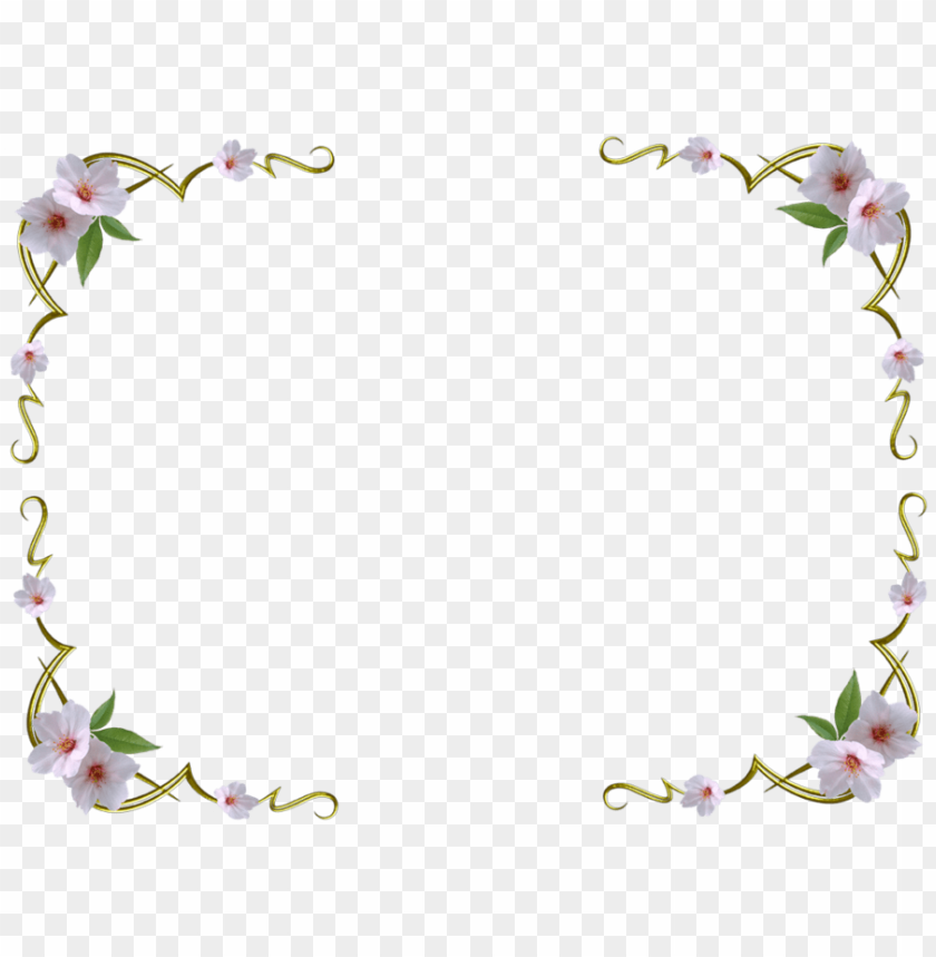 free PNG white flower background png - background images flowers white PNG image with transparent background PNG images transparent