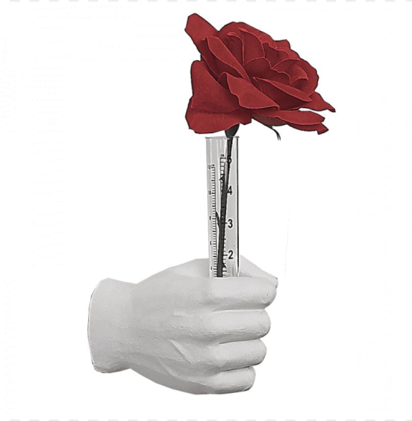 "free PNG white flower vase grip hand 7"" long - maple leaf PNG image with transparent background PNG images transparent"