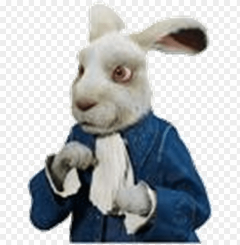 free PNG white rabbit - alice in wonderland rabbit PNG image with transparent background PNG images transparent