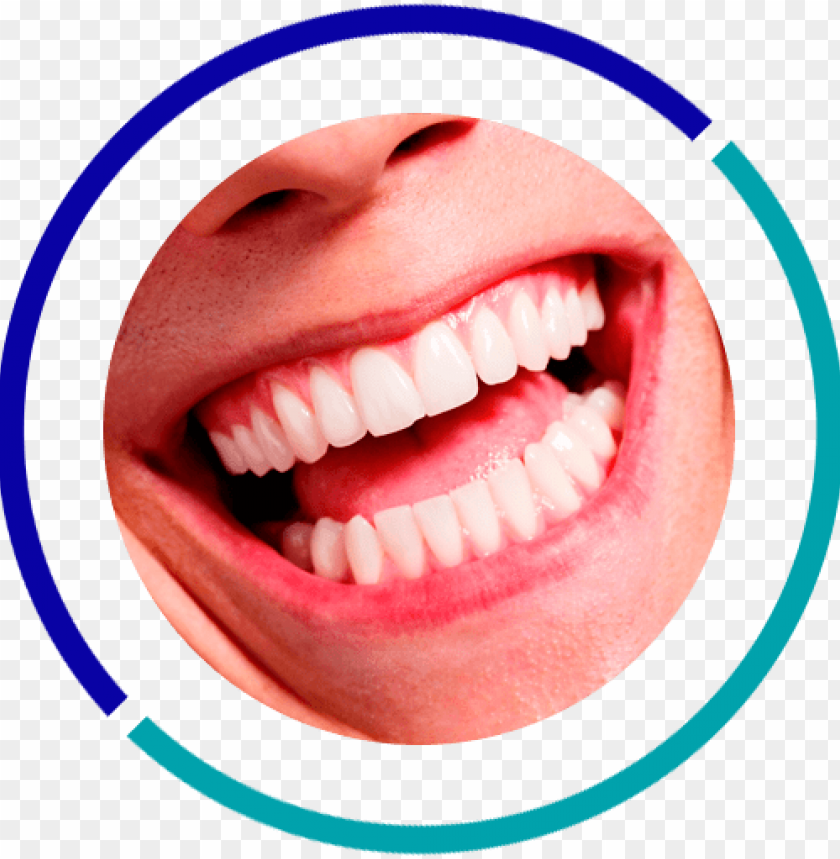 free PNG white teeth smile with dental mirror PNG image with transparent background PNG images transparent
