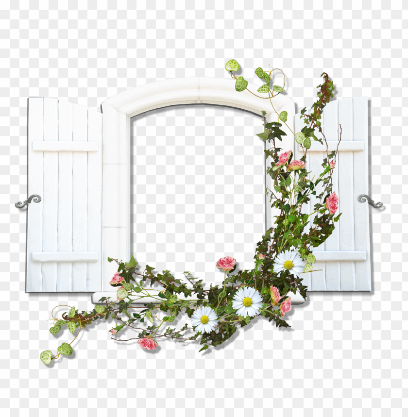 free PNG window with wild flowers flowers transparent frame background best stock photos PNG images transparent