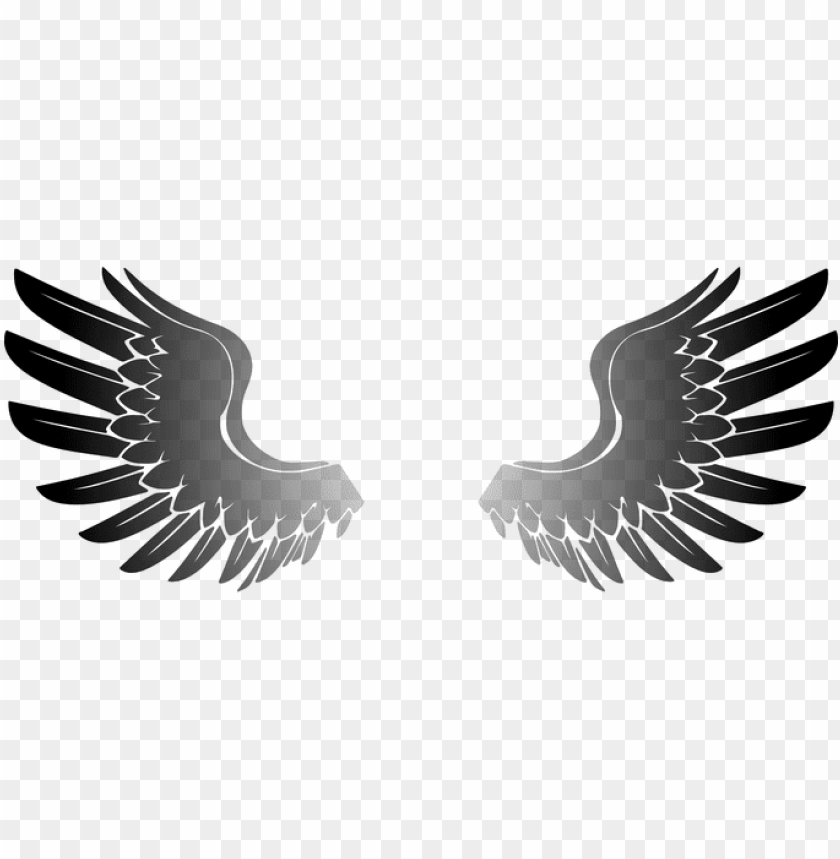 free PNG wings angel eagle bird wings wings wings w PNG image with transparent background PNG images transparent