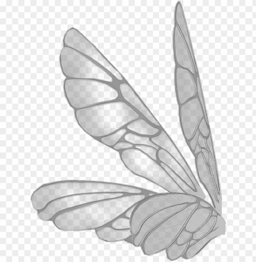 free PNG wings butterflywings butterfly fairy fairywings - fairy wings PNG image with transparent background PNG images transparent