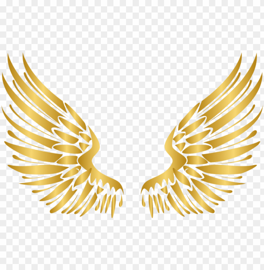 free PNG wings gold wing angel angels angelwings angelwing golde - transparent wings vector PNG image with transparent background PNG images transparent