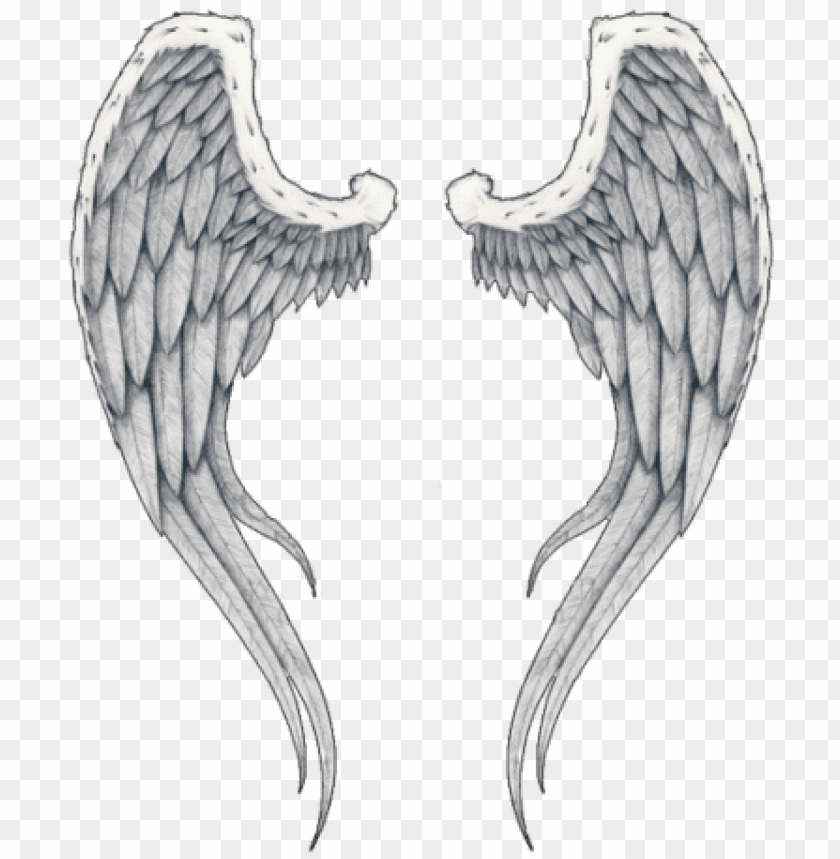 free PNG wings tattoos clipart png images - angel wings tattoo transparent PNG image with transparent background PNG images transparent