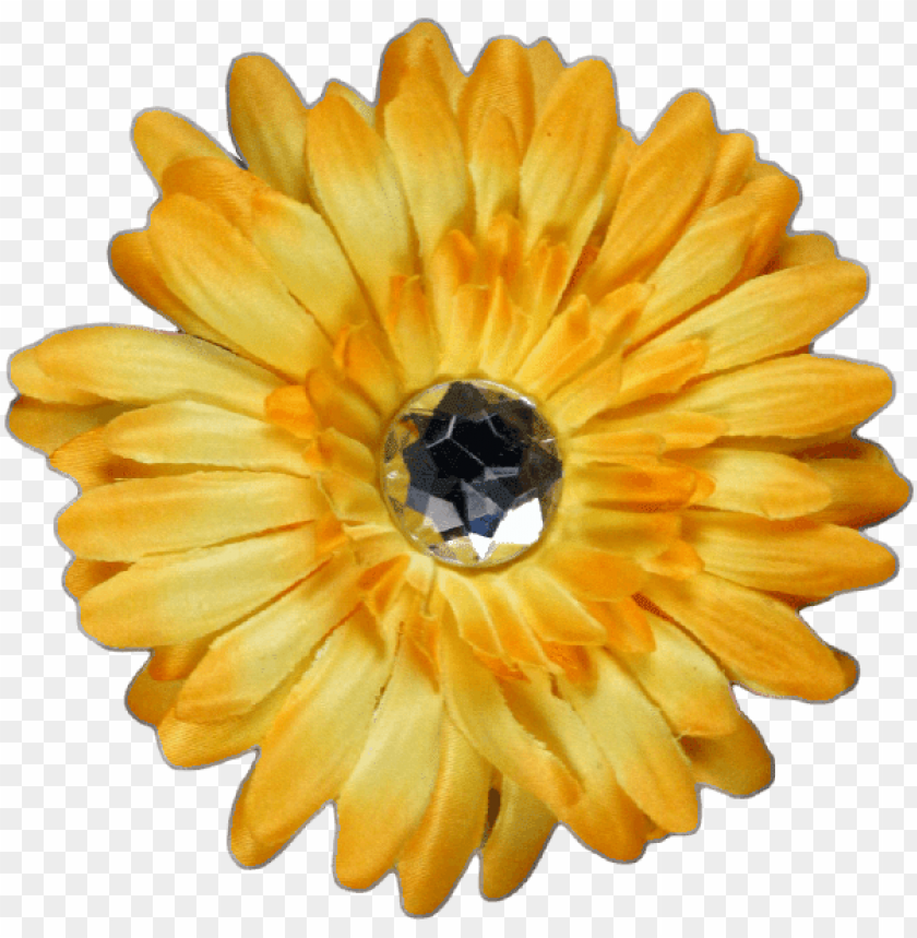 free PNG yellow flower - 2 月 8 日 誕生 花 PNG image with transparent background PNG images transparent