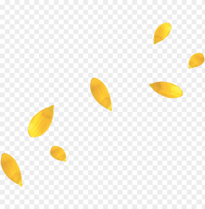 free PNG yellow flower petals - yellow flower petal PNG image with transparent background PNG images transparent