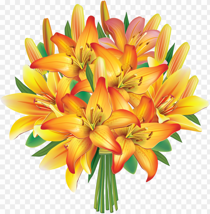 Lily Flowers Clip Art